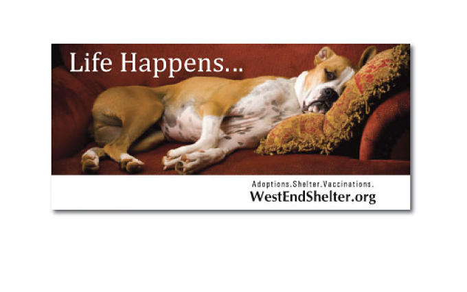 ontario non profit west end shelter for animals outdoor billboard from perry design and advertising - image
