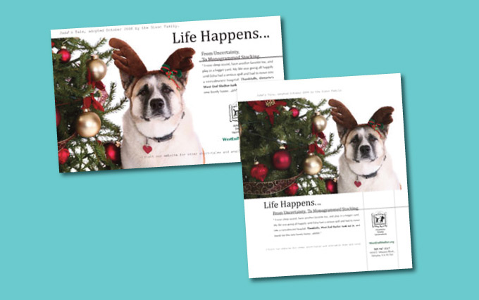 ontario non profit west end shelter for animals print ads from perry design and advertising - image